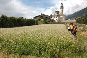 Santuario della Madonna di Campagna Ponte in Valtellina
